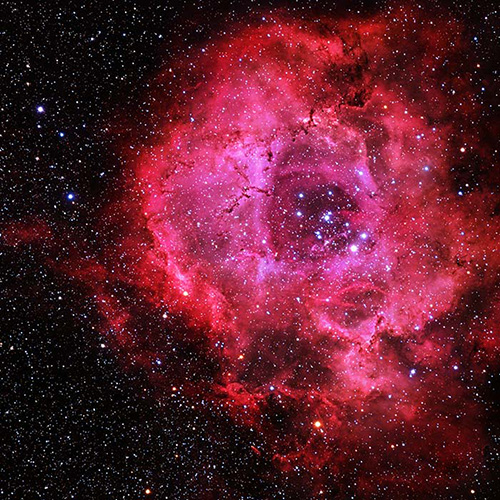 THE LIBERTY ROSE NEBULA